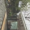 2012.05 余市柿崎商店 旬の「うに丼」
