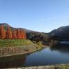 屋代ダム公園( 山口県大島郡周防大島町)