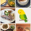 【33w4d】17/06/02の食事