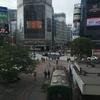 5月4日…雨〜曇り