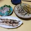 館山築港で釣り(2018年9月29日)