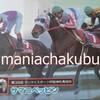 サラブレッドカード95 047 第38回サンケイスポーツ杯阪神牝馬特別 サマニベッピン