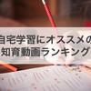 【幼児知育】自宅学習にオススメ!Amazonプライムビデオランキング