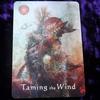 今日のカード Taming the Wind