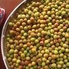 隣町の小梅で、梅干し初挑戦!夏に向けて、ズッキーニ2鉢目、枝豆、モロヘイヤの植え付け。