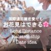 【国際恋愛】国際遠距離でもお花見はできる!〜遠距離恋愛のデート〜