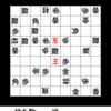 詰将棋迷路:問題28