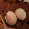 【伊豆半島縦断ドライブ!】3.桜葉シェア70%の松崎町~峰温泉大噴湯公園