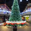 クリスマスは何の日か知ってますか?実は知らない人が多いクリスマス☆