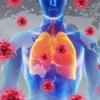 【この時期、免疫力を高めるなら肺の働きに注目】鼻や喉の粘膜の弱りはつまり肺の弱り