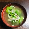 【簡単料理編】ダシダを使ってセロリ豚肉スープを作りました。