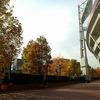 根岸線 横浜スタジアムの黄葉