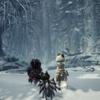MHWI日記:2 雪での初狩猟と新拠点セリエナへッ