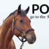 2020-21POG 2歳戦6月~9月評価【牡馬編 part2】
