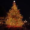 クリスマスの諸行事決定