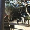 酒列磯前神社と大洗磯前神社