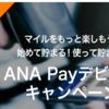 【ANAPay】今日までに登録するとANAマイレージ500マイルゲット!(`・ω・´)