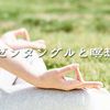ゼンタングルと瞑想 〜ゼンタングルは創造性の源を体験できる〜