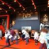 横浜CATS ラストスパート公演