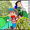 お盆は尾瀬へ♪(見晴への木道に到着!)