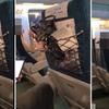(海外反応) KTXハンバーガー乗客「その日の行動は反省」謝罪したが…。到頭告訴された