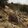 神戸六甲山系)トゥエンティクロス土砂崩れ被害状況(2018)
