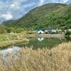小茂田濱神社横の池(仮称)(長崎県対馬)