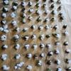 奈良手紡ぎの会で見た摘みたての綿