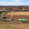 河川敷野球場