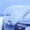 雪よけと筋肉痛