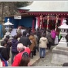 淡嶋神社の雛祭(雛流し)へ行こう! 今年は桜鯛祭りも楽しんじゃおう!
