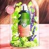 【ロクシタン】新発売シャンプー&コンディショナーの口コミ。香り・髪の保湿効果