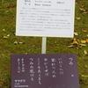 万葉歌碑を訪ねて(その1048)―奈良市春日野町 春日大社神苑萬葉植物園(8)―万葉集 巻三 三八七