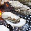 【乙部町】新鮮な知内の牡蠣でおうちBBQ/泰安丸直売所