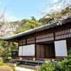 【京都】『知恩院』に行ってきました。 京都桜 京都観光 京都旅行 女子旅