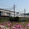 通達273 「 甲129 東京メトロ13000系(13115f)の甲種輸送を狙う 」
