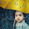 【梅雨】に聴きたい【クラシック音楽7選】雨の日も心楽しく過ごしたい…
