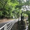 想う風景 ~北鎌倉 瓜が谷~
