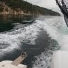 【クラウドファンディング】広島が誇る世界遺産『宮島(厳島)』の海を釣りと漁で満喫し倒した、ある一日の記録。 ~漁業編~