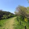 Linch time Walking
