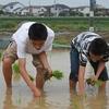 6月25日 「2017親子農業体験」 有志による田植え