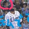 メットライフドーム『西武ライオンズvs東京ヤクルトスワローズ』交流戦(野球ネタ)