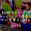 【家庭菜園】秋野菜スタート!アントシアニン豊富な『紫ハクサイ(紫奏子)』植えてみた!