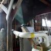 籾すり作業により米の完成へと。