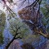 森・水・風・・、360°自然に囲まれてみた。ストレス消えた。-東京近郊。宝篋山(茨城)で自然さんぽ-