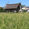 No.33⌒★【静岡市】戦争と登呂遺跡、戦争と教団