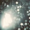 小山田壮平 アルバム【THE TRAVELING LIFE】を聴きながらゆったりドライブへ出掛けよう。