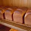 ピクニック 鳥取市 パン サンドイッチ