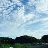 昨年に引き続き生徒さんが伊藤園新俳句大賞に入賞しました*\(^o^)/*