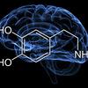 新型うつ(非定型うつor適応障害)の原因はドーパミン不足じゃないだろうか?